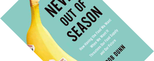 never-out-of-season
