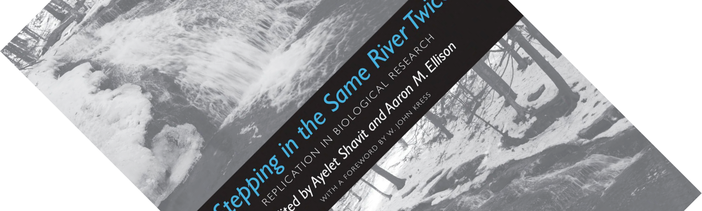 Stepping in the Same River Twice