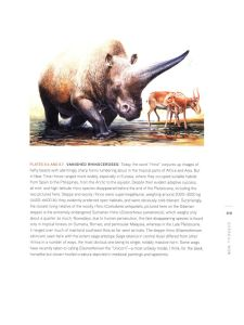 End of the Megafauna internal 3