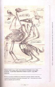 The Art of Animal Anatomy internal 2