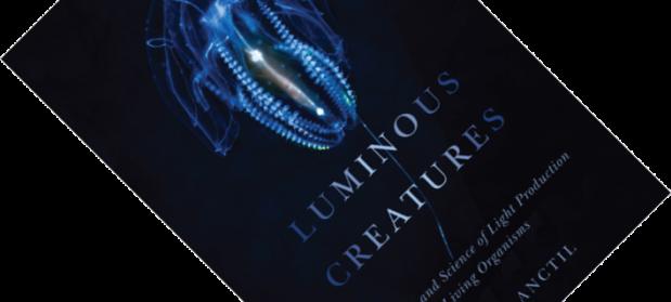Luminous Creatures
