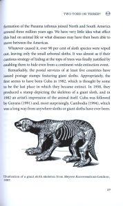 sloths internal 1