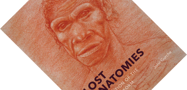 Lost Anatomies