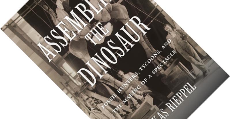 Assembling the Dinosaur
