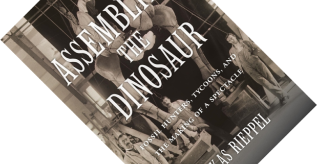 Assembling the Dinosaur