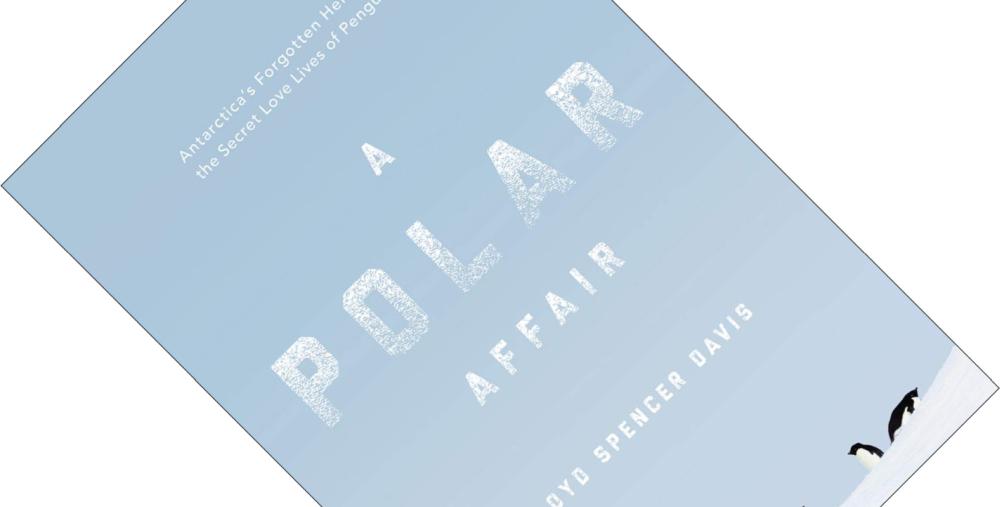 A Polar Affair.png