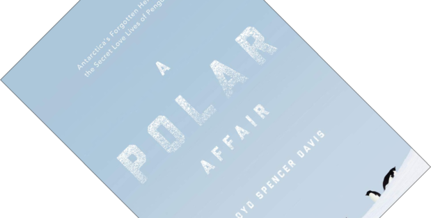 A Polar Affair.png