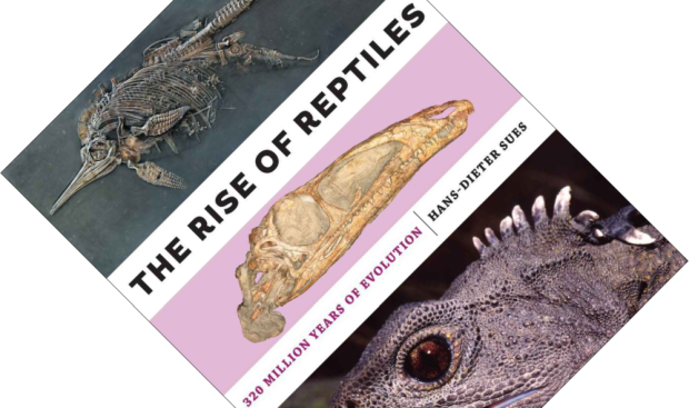 The Rise of Reptiles.png