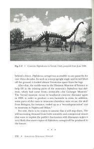 American Dinosaur Abroad internal 4