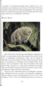 A Book of Rather Strange Animals internal 4