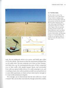 Desert Navigator internal 2