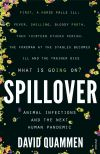 240 Spillover thumbnail